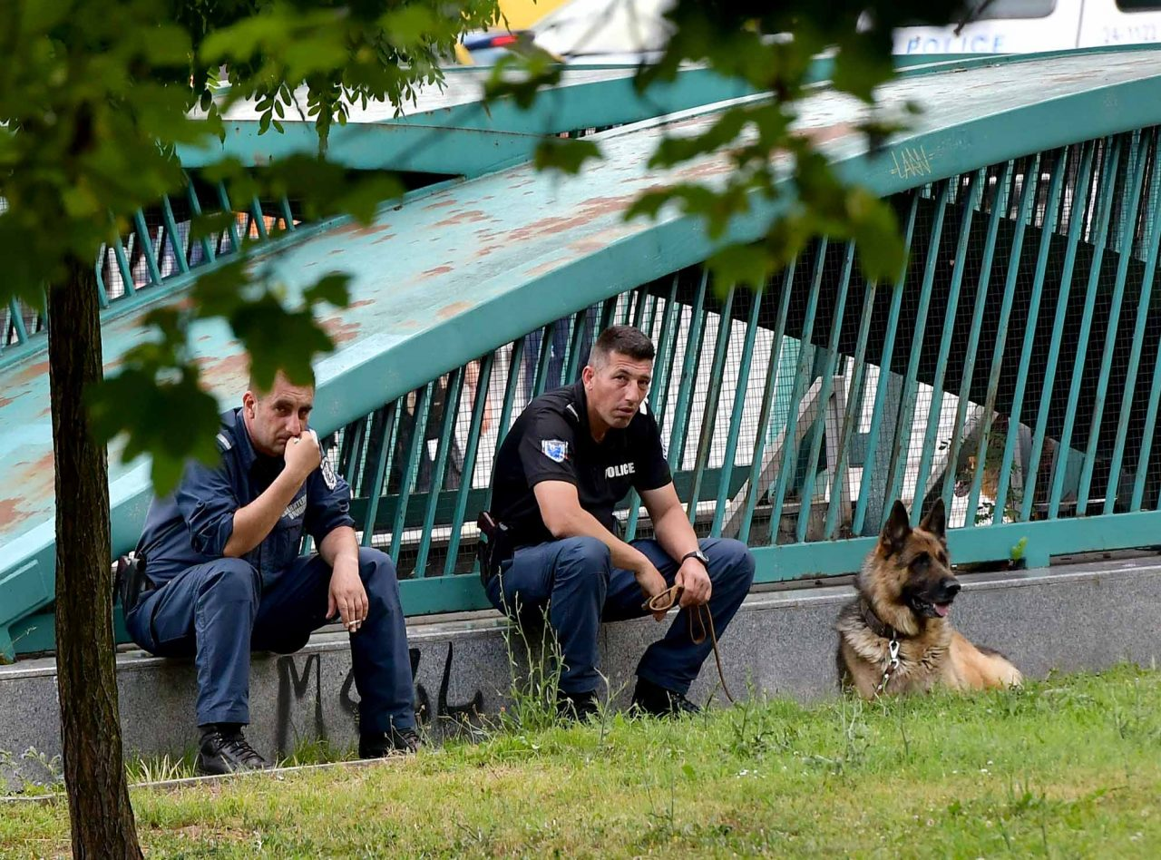 Полиция Куче