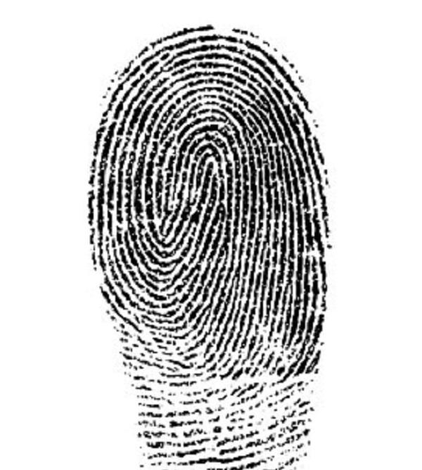 fingerprint-1382652__340