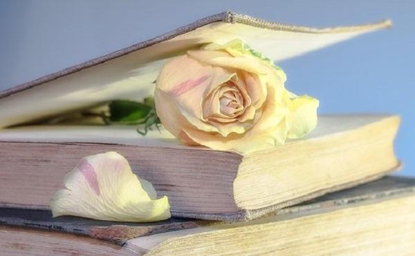 """За книгата """"Пророчицата Ванга единствената връзка между земята и небето"""""""