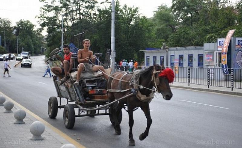 Пълната забрана за каруци в столицата би трябвало да е
