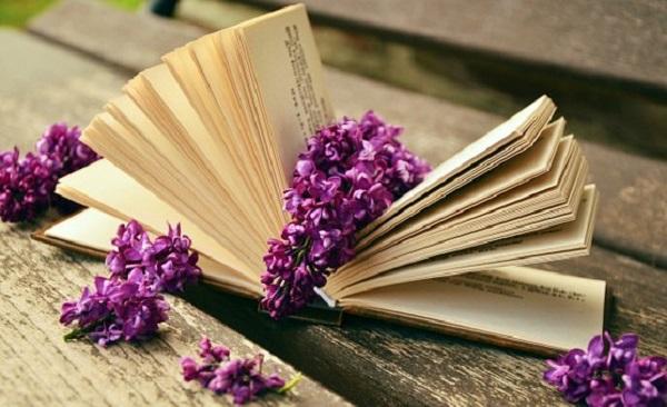 book-759873__340.jpg